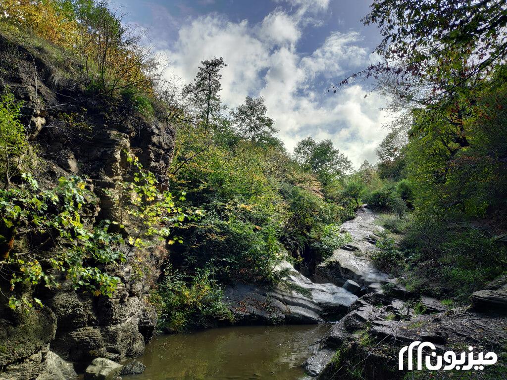 در دل جنگلهای ساسنگ