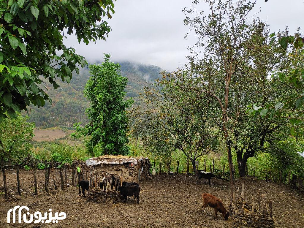 زندگی در روستای ساسنگ