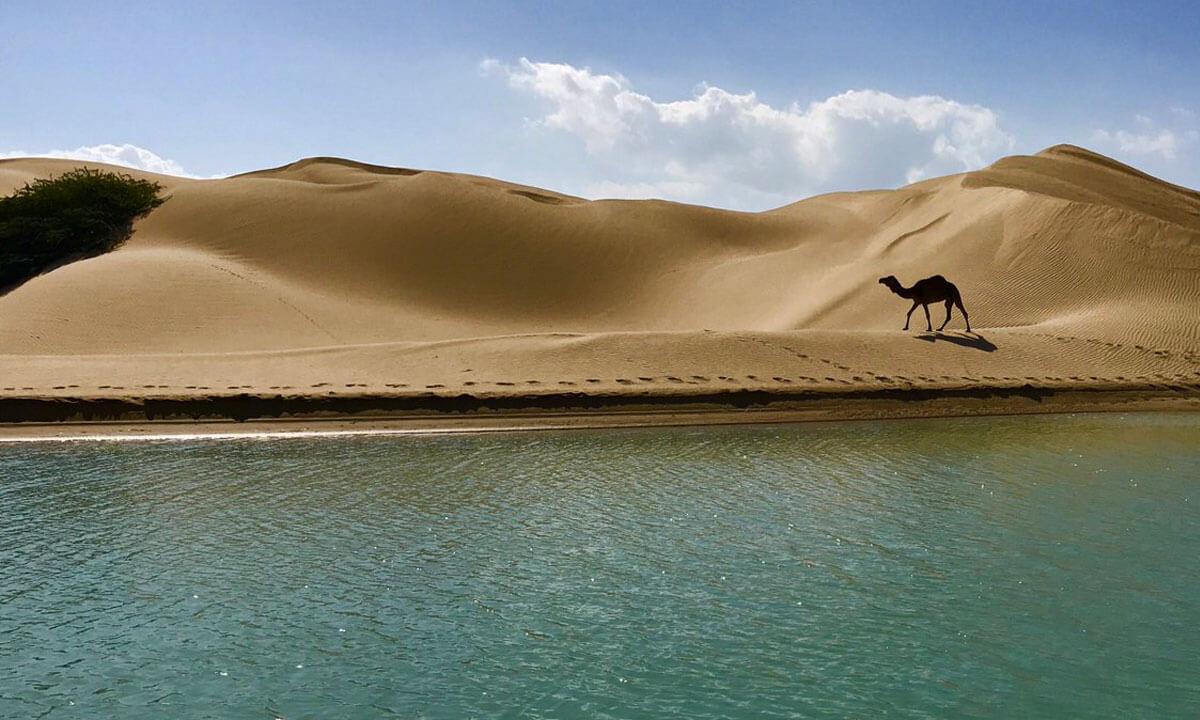 ساحل ماسهای درک