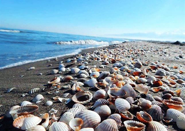 ساحل زیبای جزیرۀ قشم