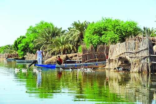 قایق سواری در تالاب شادگان