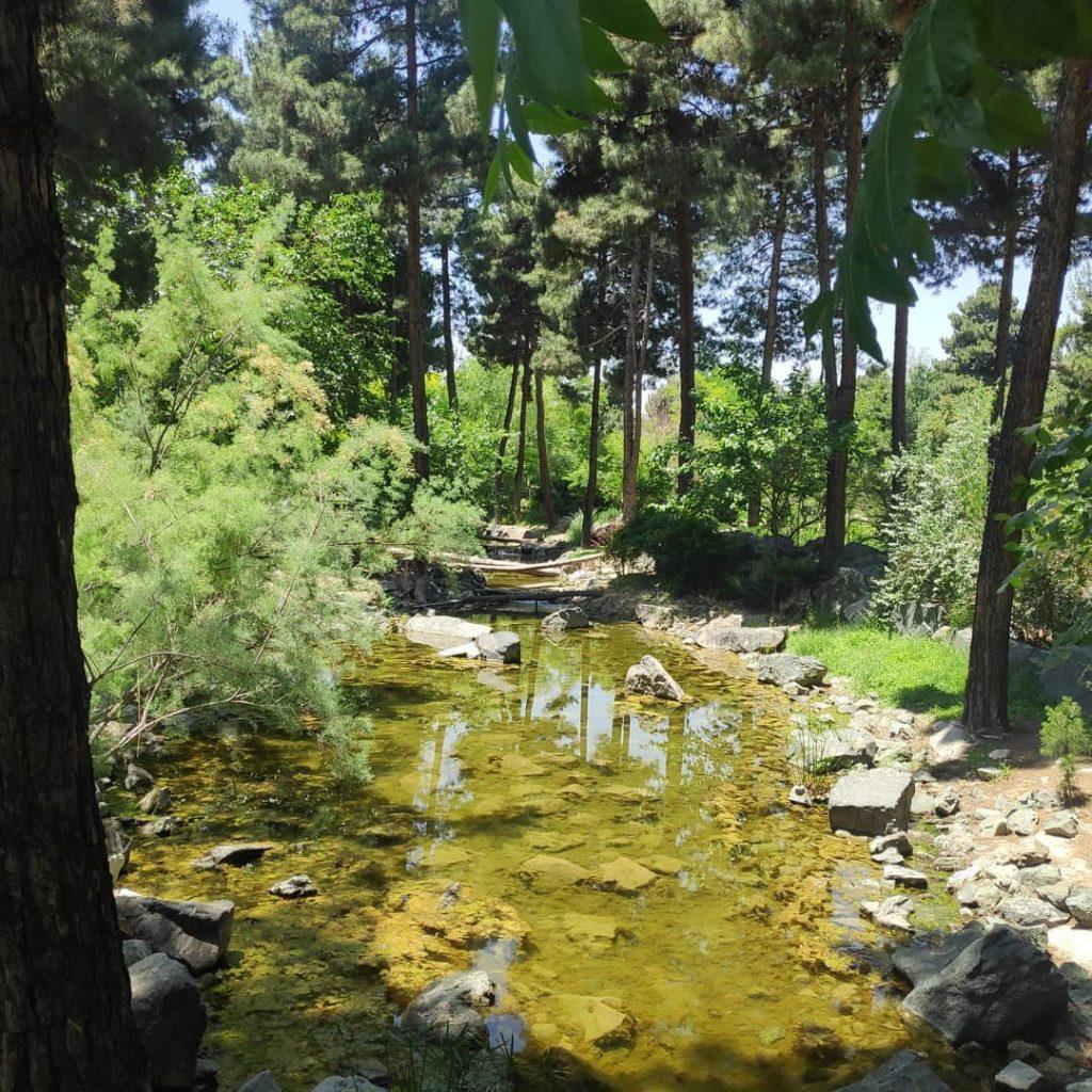 نمایی از مسیر برکه باغ گیاهشناسی مشهد