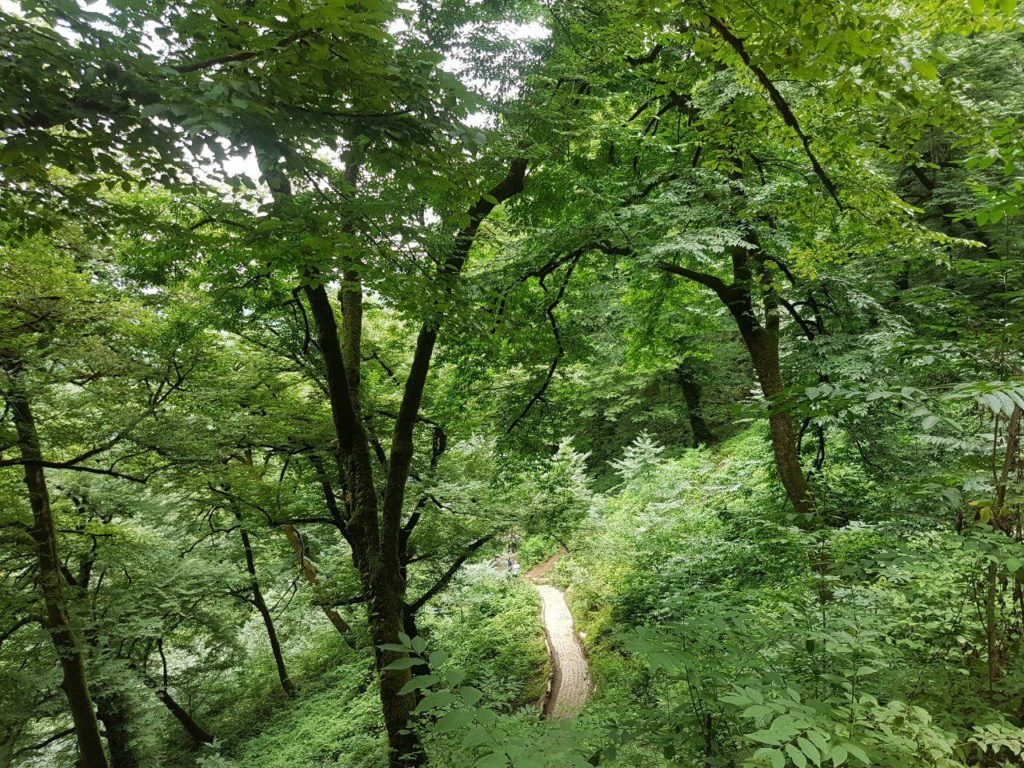 قسمتی از مسیر پیادهروی به سوی قلعهرودخان