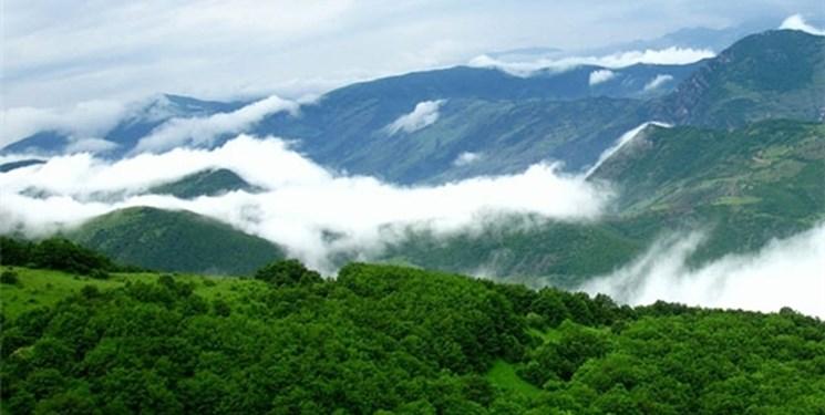 جنگل ارسباران در حوالی تبریز