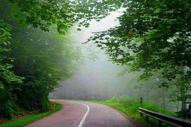 جادۀ سبز و خیالانگیز کلاردشت به عباسآباد