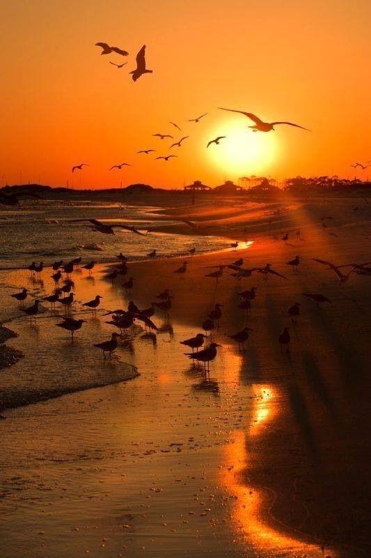 غروب آفتاب در ساحل جزیرۀ کیش