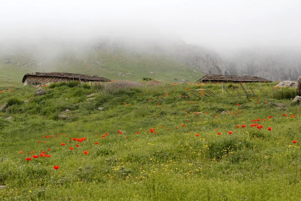 منطقۀ ییلاقی سوباتان در حوالی شهر تالش