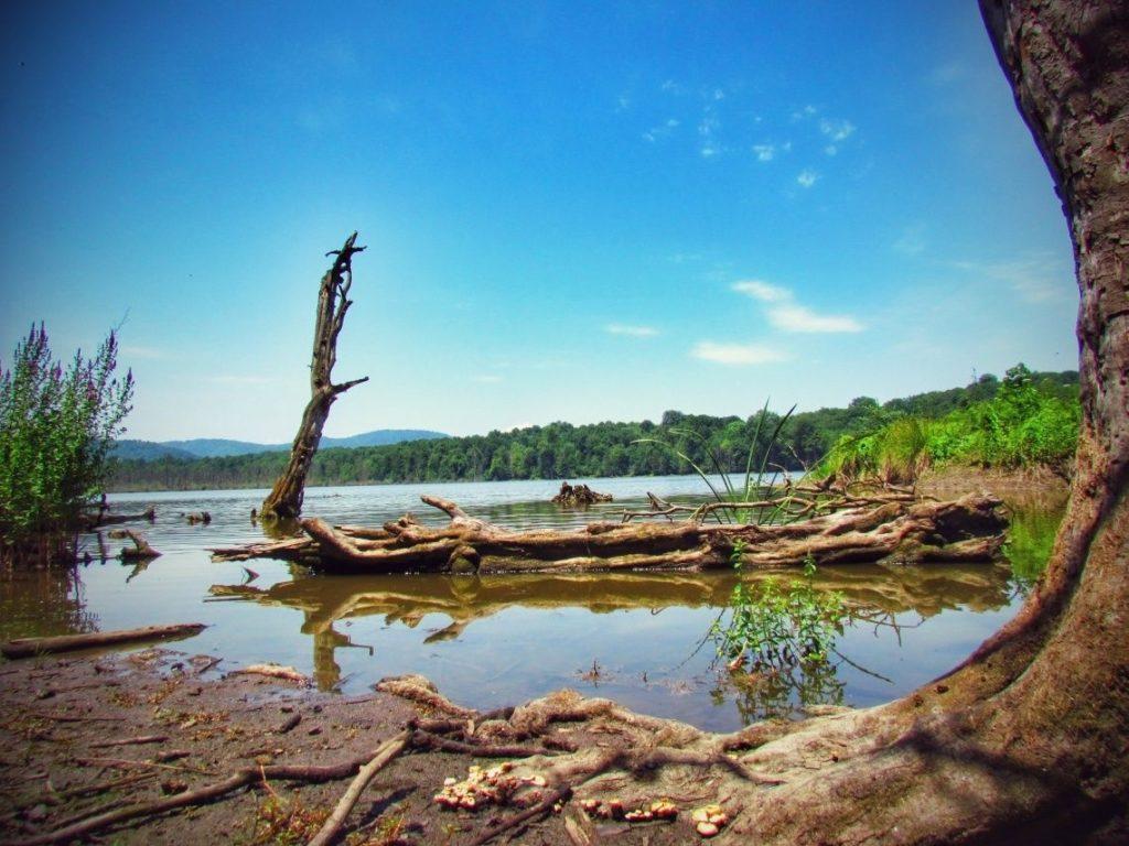 دریاچه الندان ؛ رؤیایی آبی و آرام در حوالی شهر ساری