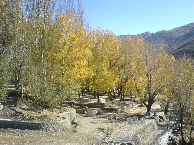 قسمتی از فضای سبز اطراف آبشار و کتیبهها