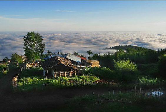 دهکدۀ مازیچال؛ سبز، رنگین، درخشان ...
