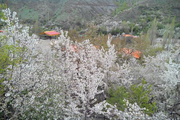 روستای سقفهای شیروانی: