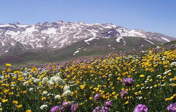 استان کردستان زیبای غرب ایران