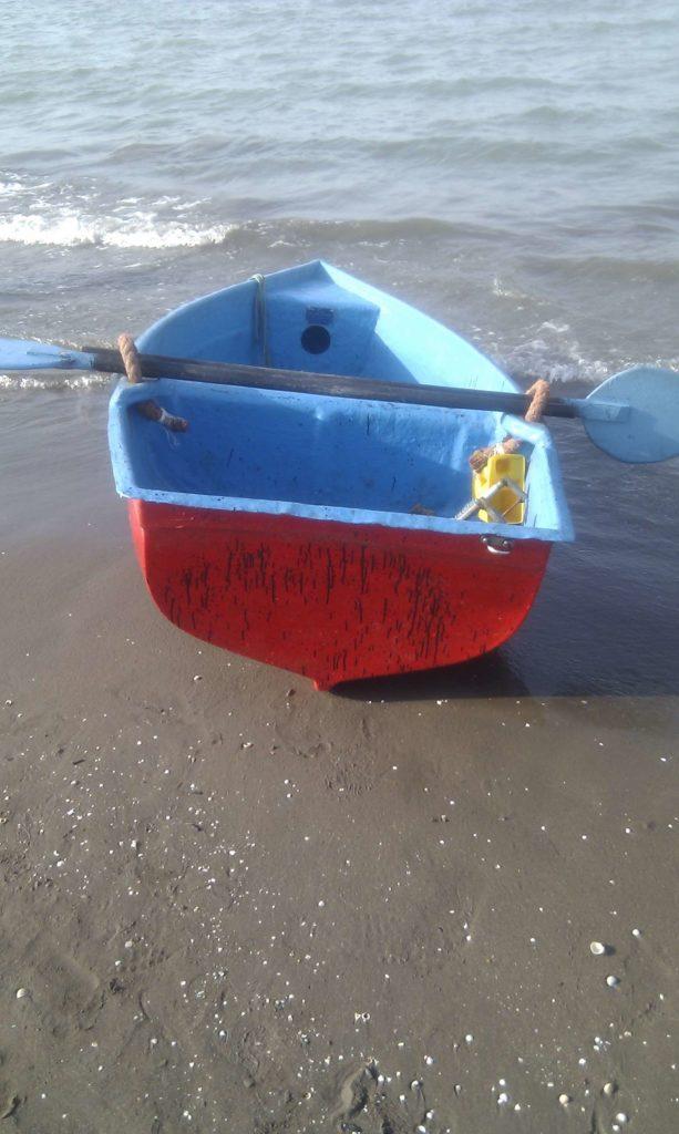 قایقهای پارویی