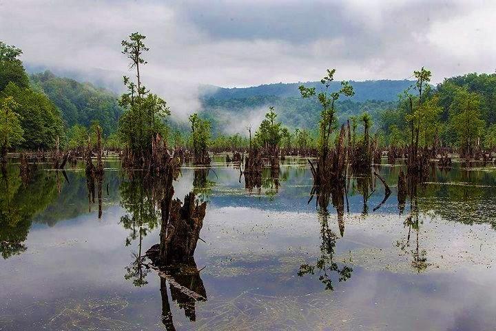 دریاچه ارواح ؛ جذاب، حیرتبرانگیز و اسرارآمیز، در استان مازندران