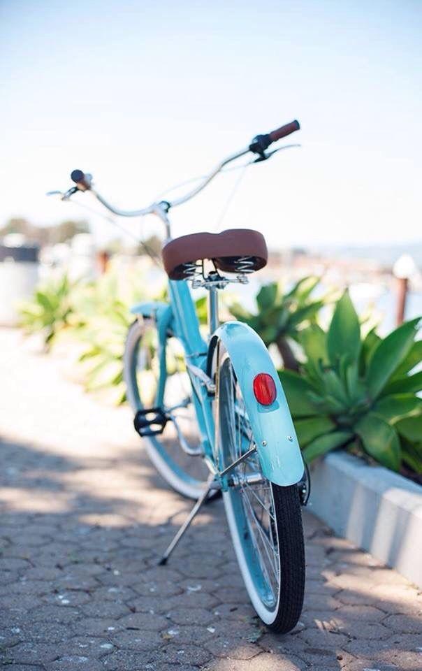 دوچرخهسواری در کنار اسکله