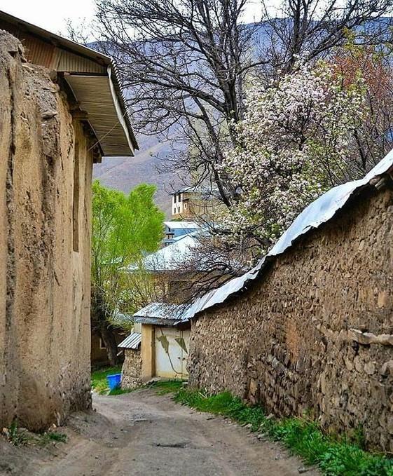 کوچهباغهای دلگشای روستای یوش