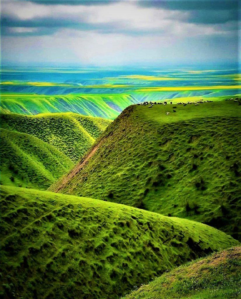 دشت دلنواز ترکمن صحرا