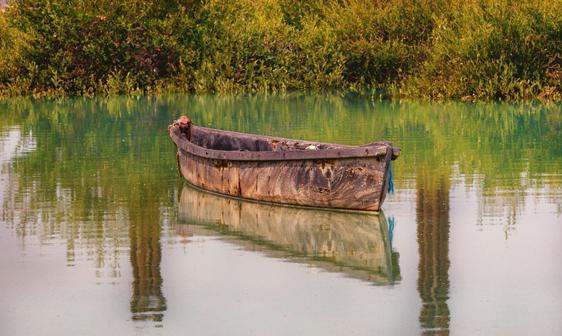 قایقسواری در حوالی جنگلهای ارزشمند حرا