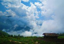 بوستان جنگلی صفارود در شهر رامسر