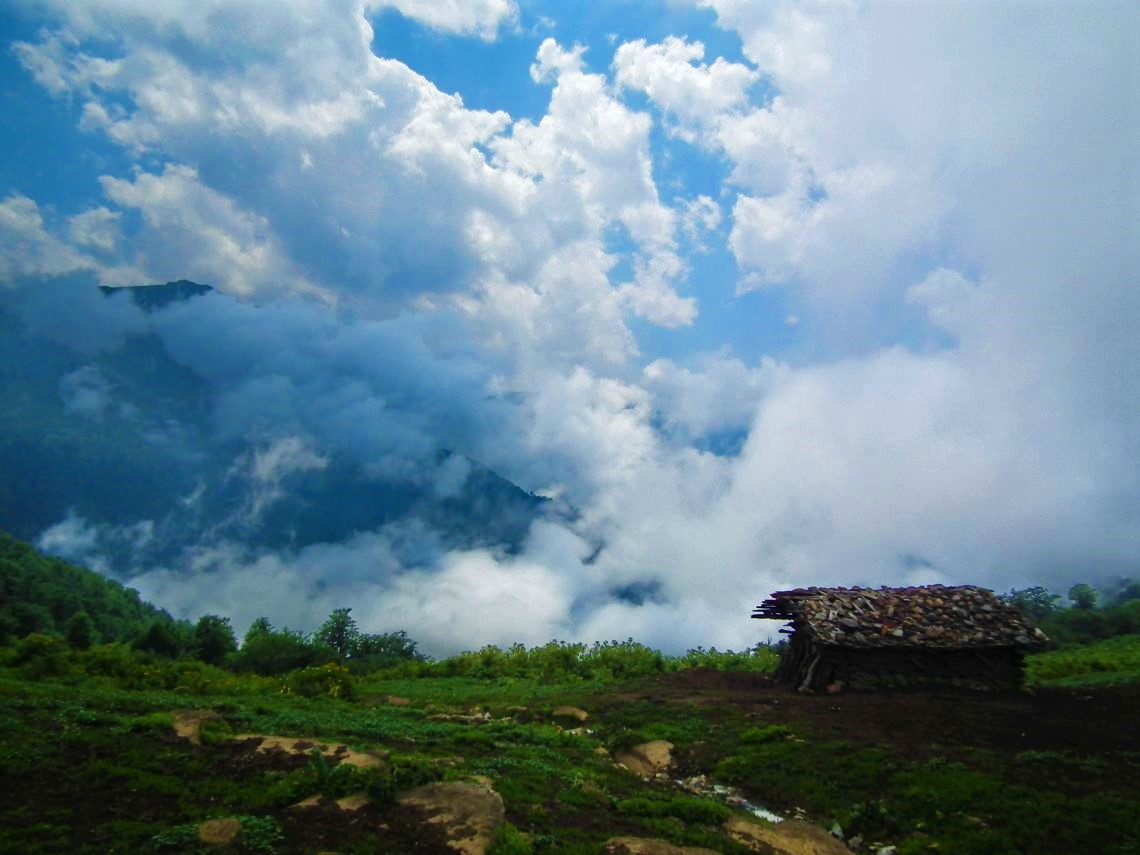 بوستان جنگلی صفارود در شهر رامسر ییلاقی باطراوت