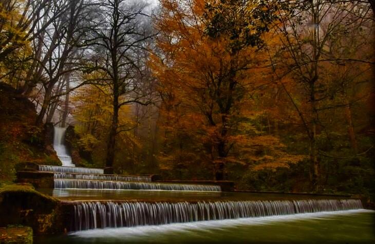پارک جنگلی صفارود در شهر رامسر