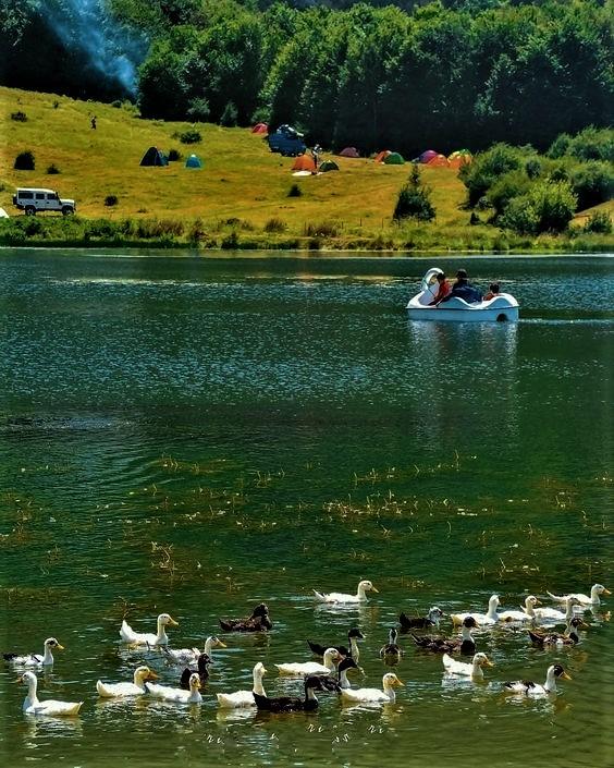 دریاچۀ ویستان تحقق رؤیاهای شگرف در طبیعت باطراوت گیلان