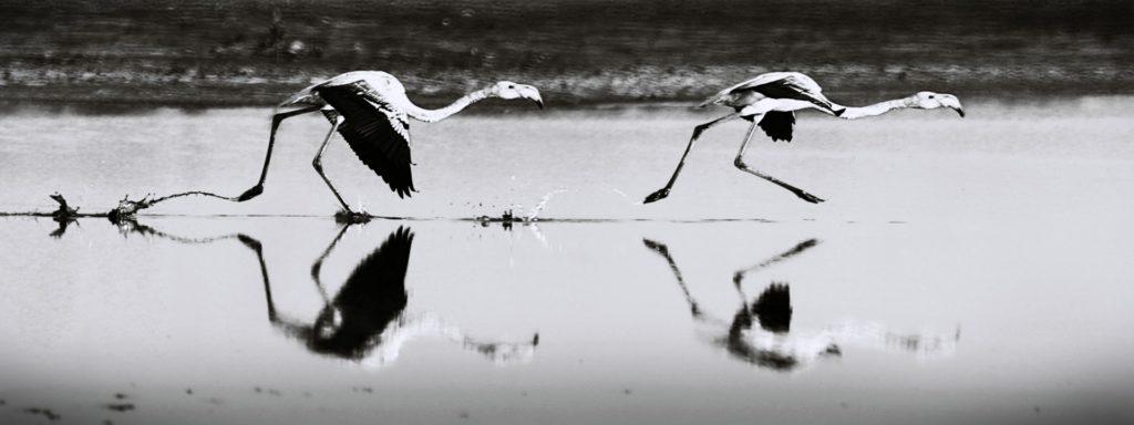 خلیج نایبند، منظرهای تماشایی در حوالی بندر کنگان