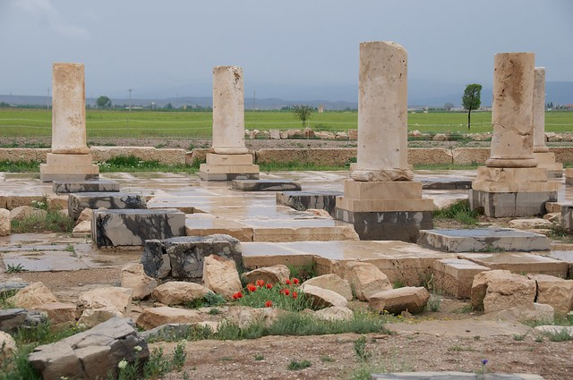قسمتی از محوطه تاریخی پاسارگاد