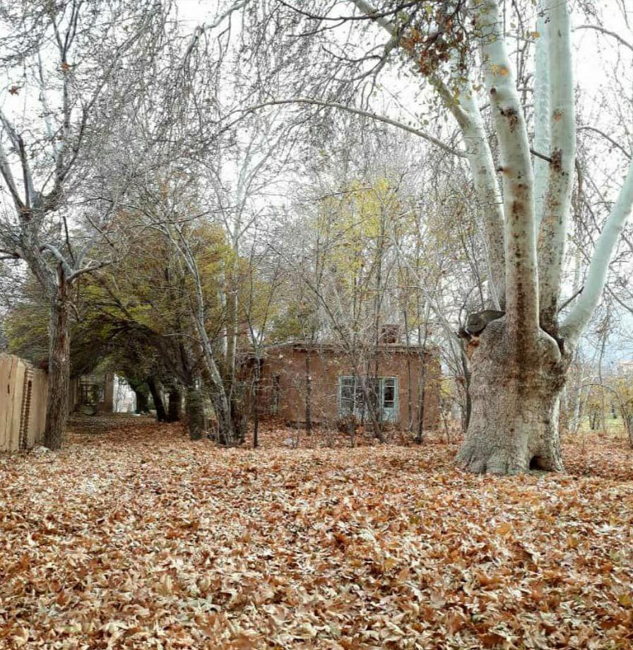 روستای کمالالملک - کاشان