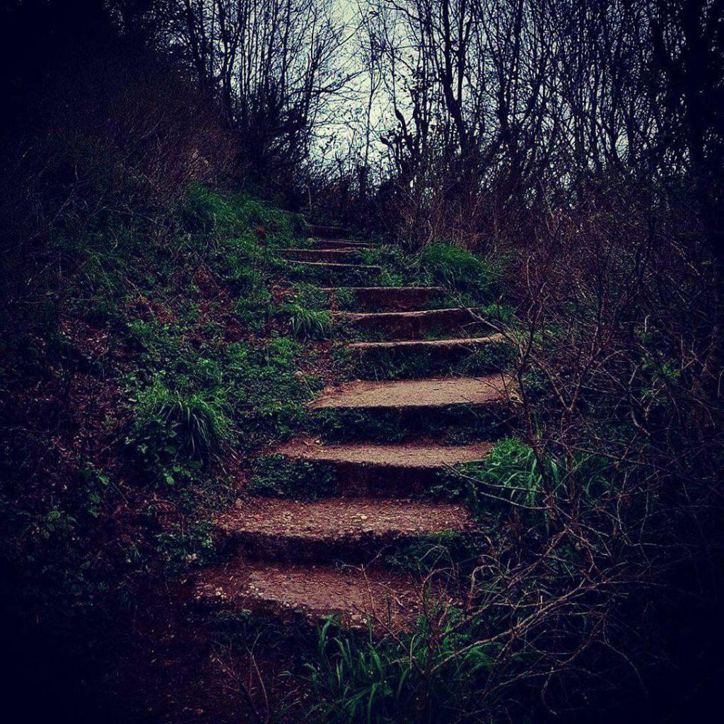 پلههای مسیر قلعه مارکوه رامسر